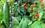 Куриное перо как удобрение применение для огорода