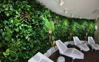 Вертикальное озеленение с системой автоматического полива для дома и офиса