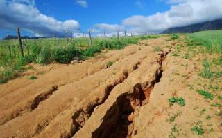 Капельный полив растений на полях приводит к развитию водной эрозии
