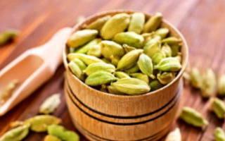 Как вырастить кардамон из семян в домашних условиях