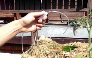 Как сделать капельный полив своими руками для огорода из капельницы