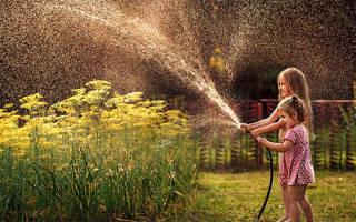 Как выбрать шланг для полива огорода