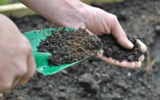 Какие удобрения относятся к фосфорно калийным