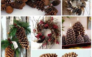 Новогодняя упаковка украшенная еловыми шишками