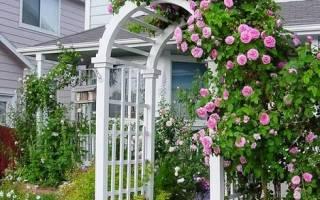 Сетчатая деревянная арка в плетистой розе