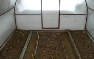 Устройство теплицы из поликарбоната внутри