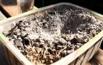 Древесная зола для удобрения огорода