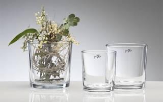 Орхидея ванда в стеклянной вазе уход в домашних условиях