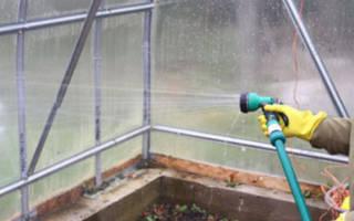 Чем помыть теплицу из поликарбоната осенью
