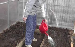 Обеззараживание почвы в теплице