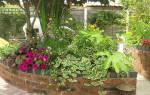 Для полива различных участков сада на которых растут сливы решение