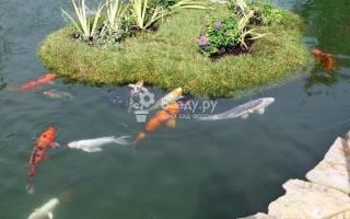 Акваклумба в пруду помогает очищать воду