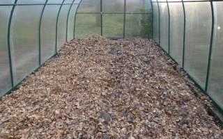 Обработка земли в теплице из поликарбоната осенью