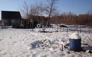 Заготовка талой воды для полива рассады