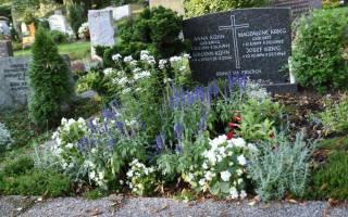 Какие кустарники можно посадить на кладбище