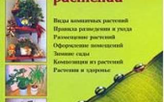 Энциклопедия от а до я комнатных растений