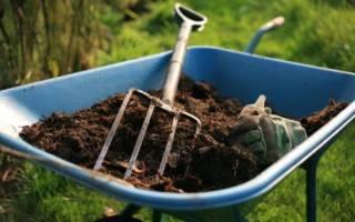 Органические удобрения их виды и характеристика