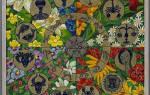 Комнатные цветы для женского счастья по знакам зодиака