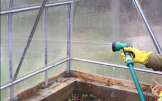 Чем мыть теплицу из поликарбоната осенью