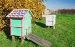 Уход за пчелами осенью и зимой